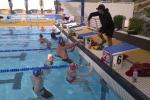 Swim For Tri Swimming Coaching
